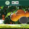Kingeta contiene efficace il fertilizzante composto basato NPK 18-18-6 del fertilizzante del carbonio carbonio