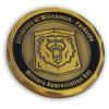 معدن أثر قديم نحاس أصفر تذكار عملة عسكريّة مع أسد علامة تجاريّة