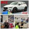 Sema 2015 kennzeichnen Lieferanten-magischen Chamäleon-Lack für Auto