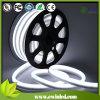 Single And RGB Color DEL Neon Tube avec Carton Size 36*36*36cm (50m/Carton)