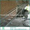 Rejilla de acero profesional de la banda de rodadura de la escalera de la pasarela
