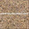 De Tegels van het Bladgoud van het graniet, Grote Plakken