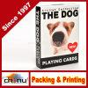 Le schede di gioco dell'accumulazione di Artlist del cane (430187)
