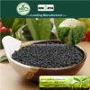 Il carbonio di Kingeta ha basato il fertilizzante composto NPK 18-18-6 per la pianta