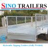 Galvaniseerde de Hoge Capaciteit van de Aanhangwagen van het Meubilair van de familie de Aanhangwagen van de Stortplaats