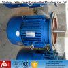 La costruzione lavora i motori alla macchina asincroni a tre fasi del rotore conico di Yez