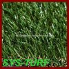 Indoor와 Outdoor Field를 위한 인공적인 Grass