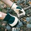 Кожаный Перчатк-Промышленная Перчатк-Работая Перчатк-Безопасность Перчатк-Трудится Перчатк-Работает перчатка