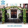 A alta qualidade Crafted a porta do ferro feito/porta 002
