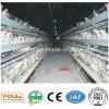 Автоматические клетки цыпленка батареи сделанные в Китае