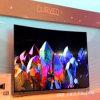 실내 특별 전시 LED 영상을%s 연약한 스크린 란 P6.67