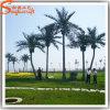 庭の装飾のガラス繊維の人工的なココヤシの木の木