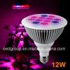 Lichter LED des 12W 24W LED Pflanzenwachstum-LED wachsen Lampen-wachsendes Licht