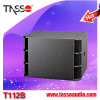 Audio profissional Loudspeaker com USB/SD