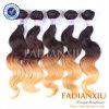 I capelli peruviani di Ombre di estensione dei capelli di modo tessono (FDX-Peru-TT001)