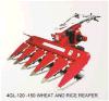 Máquina segador del arroz del trigo y de arroz