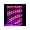 호리호리한 225PCS*0.2W LED는 3 년 가벼운 45W를 보장 증가한다