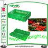 Escaninho de armazenamento vegetal dobrável plástico para o supermercado