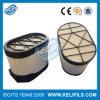 Filtro de aire para DAF (10294938)