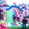 Faites glisser gonflable dans le parc de loisirs