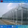 いちごのためのマルチスパンのVenloの商業Hydroponicガラス温室