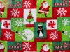 Manta programável de Natal (HZS--00151)