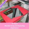 Metallizzazione sotto vuoto di alluminio dello specchio di Sinoy (SNM-AMVC 1000)