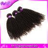 Aliexpressのブラジルのねじれた巻き毛のバージンの毛4束の取り引きの加工されていないバージンのブラジルのカーリーヘアーの織り方の人間の毛髪の拡張