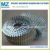 O eletro parafuso comum galvanizado torceu o prego da bobina do ferro da pata