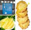 Máquina de secagem de sementes de mostarda com bom desempenho