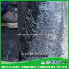 Non curare il rivestimento d'impermeabilizzazione del bitume per il progetto zero di perdita