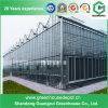 Casa verde de cristal del invernadero de Venlos de la hoja de la PC en venta