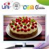 Qualité 39 '' DEL TV de conception de mode d'Uni/OEM bonne