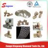 고품질 다이아몬드 세그먼트 제조자