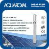 Bombas solares de la C.C. |Imán permanente|Motor sin cepillo de la C.C. |El motor se llena de agua|Receptor de papel solar Pumps-4sp14/4 (ÉL)