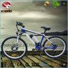 Vélo électrique de la suspension E de montagne avec le moteur avant
