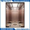 Ascenseur sans engrenages de passager de constructeur professionnel
