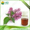 Extracto de la planta de aceite esencial del brote del clavo de la naturaleza
