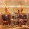 micro strumentazione di rame della fabbrica di birra della birra 500L per il Pub/ristorante
