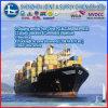 체코 프라하에 바다 Shipping 중국