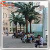 De vierkante Palm van de Kokosnoot van de Decoratie Kunstmatige