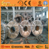 AISI 310S 2b Stainless Steel Coil