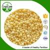 Apropriado granulado do fertilizante de NPK 20-20-15+Te para o vegetal