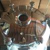 Druck-Zugriff Manway Tür der Kreisform-18 mit Flansch-Typen Anblick-Glas