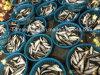 خفيفة مزلاج سردين سمكة لأنّ تنّ طعم ([سردينلّا] [أوريتا])