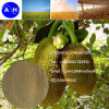 Polvere dell'amminoacido di Souce 60% della pianta