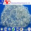 Popular de las virutas del nilón 6 de Shifeng de la calidad superior usado en el mundo