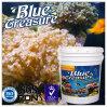 바다 과학적인 바다 소금 (HZY010)