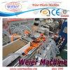 Hölzerner Profil-Plastikproduktionszweig (SJSZ65/132)