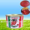 Hot vender Conservas de pasta de tomate con precios bajos para Turquía